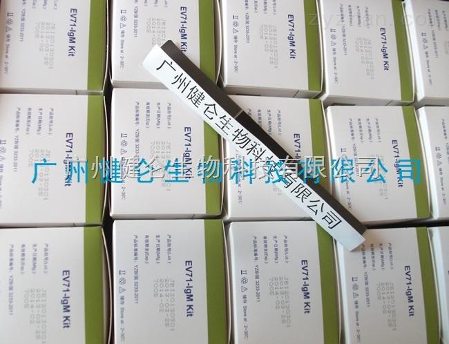 柯萨奇病毒a16型检测试剂