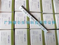 柯薩奇病毒CA16型IgM抗體檢測試劑盒(膠體金法)