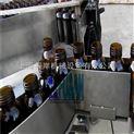 半自动理瓶机 人工理瓶机 平台式理瓶机