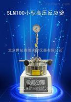 SLM100小型高壓反應釜